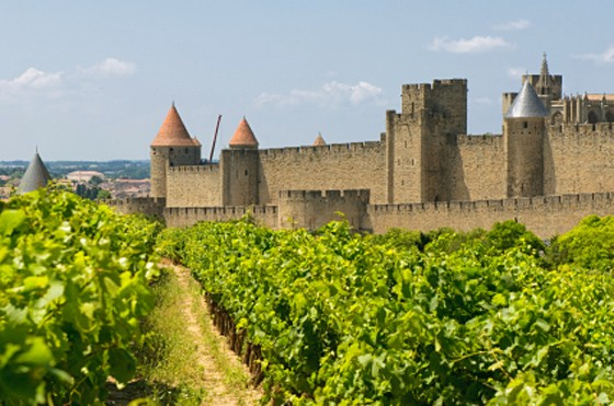 France Wine Tours