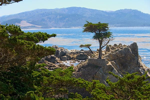 17 mile drive oceans and woodlands etraveltrips blog for 17 mile drive celebrity homes
