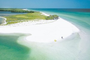 Honeymoon island flodia