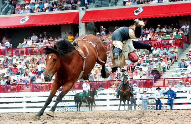 Rodeo Cheyenne Wyoming