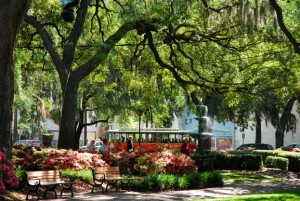 Old Town Trolley Savannah Georgia