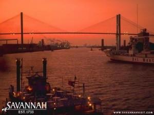 Savanah_LG[1]