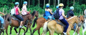 The Nayara Hotel Spa and Garden horseback riding