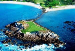 The St. Regis Punta Mita Resort golf tail of the whale