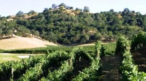 Hestan Vineyards