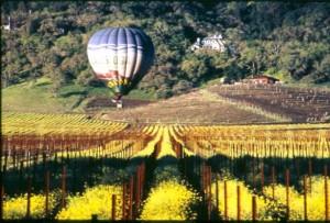Yountville ballon rides