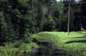 central minnsota golfing