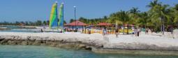 Caribbean-Feature-1-255x83