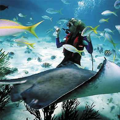 Diving Boracay
