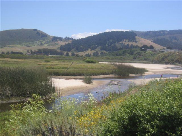 Carmel River Beach Trail