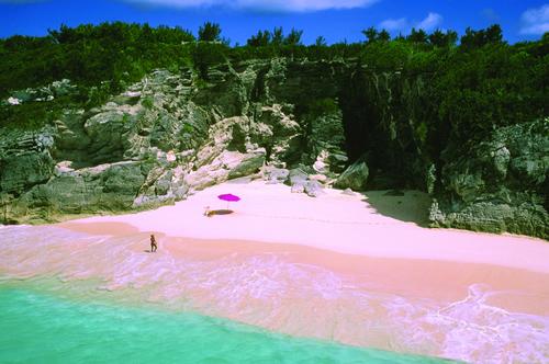 pink sand beach Bahamas
