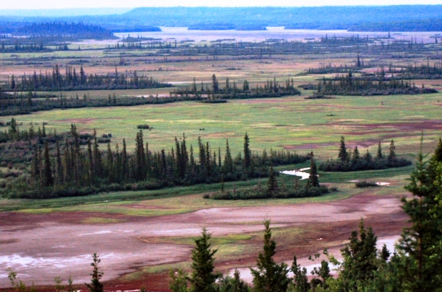 Wood Buffalo National Park Canada