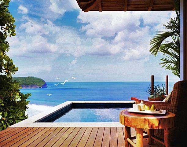 Mukul Resort Plunge Pool