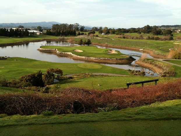 Napa California golf