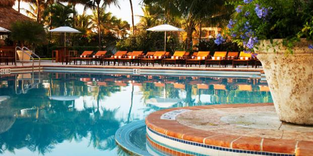 The Palms Hotel & Spa pool