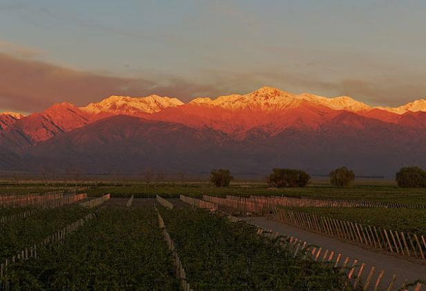 La rioja winery argentina
