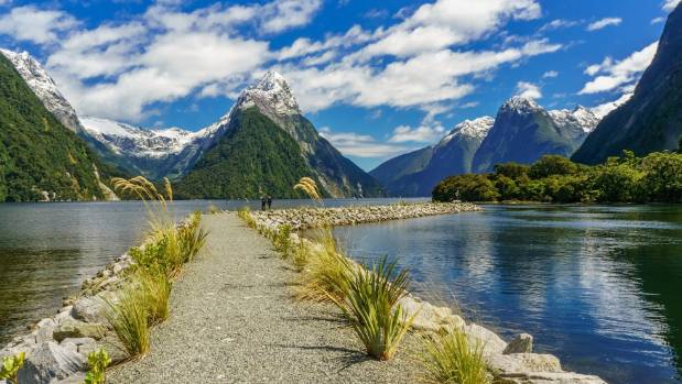New zealand natural beauty