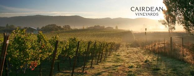 Cairdean Vineyards